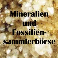 Mineralien und Fossiliensammlerbörse 2020 Eggenburg