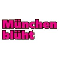 München blüht  Munich