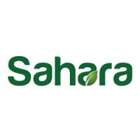Sahara 2020 Le Caire