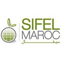 Sifel Maroc 2015 Agadir