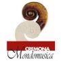 Cremona Mondomusica, Crémone